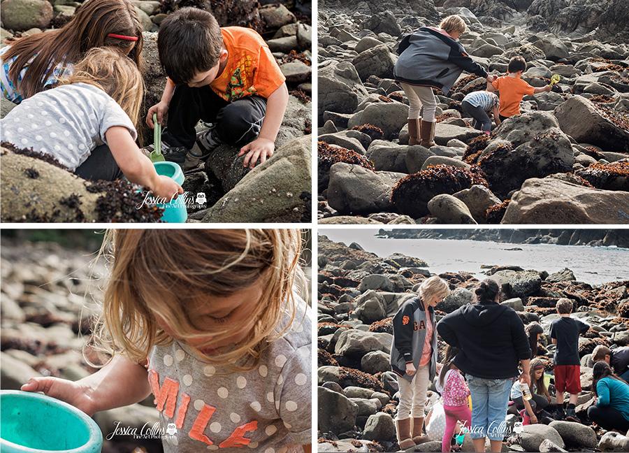 Documentary, Photographer, Sonoma County, Ca. Photography, ocean cove