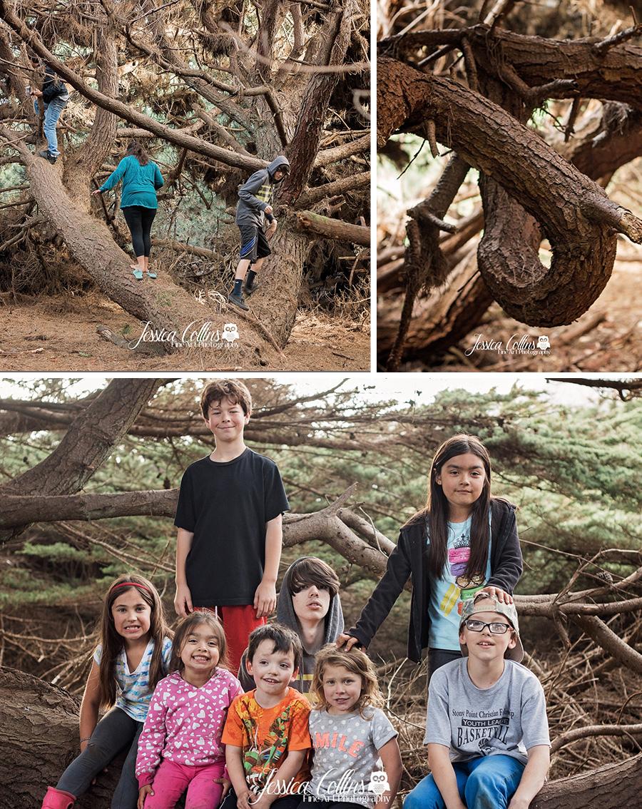 sonoma county camping, photographer, santa rosa, ocean cove