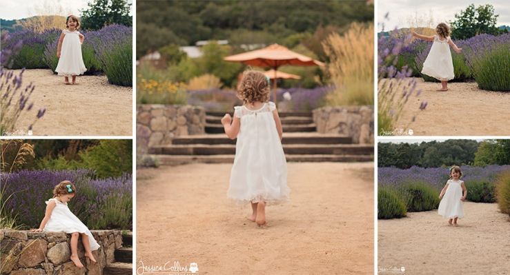 Lavender Field Photography with children in Sonoma County California