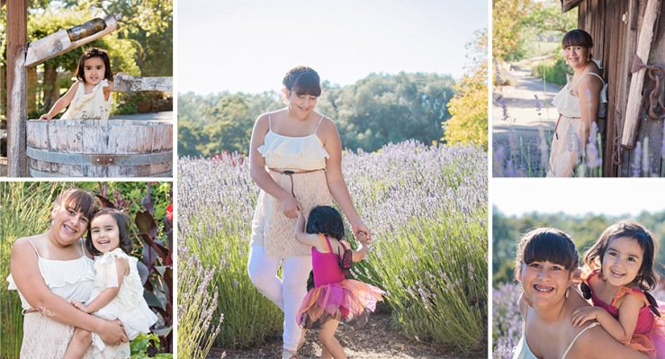 Lavender field Photo sessions by Sonoma County California Photographer