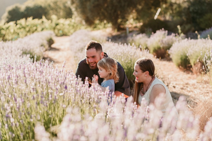 Russian RiverValley_Family Photographer_Guerneville-2